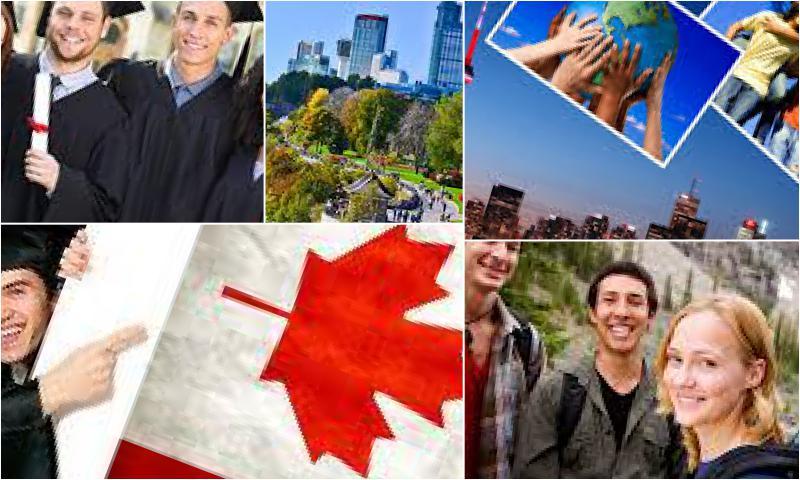 Kanada Sertifika Programı Bulunduruyor Mu?